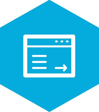 web_surveys